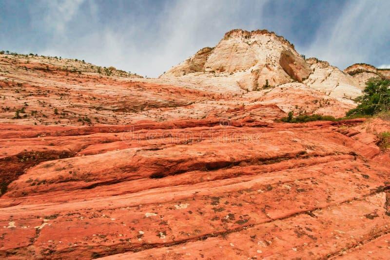 Pendii del canyon di Zion l'utah U.S.A. fotografie stock