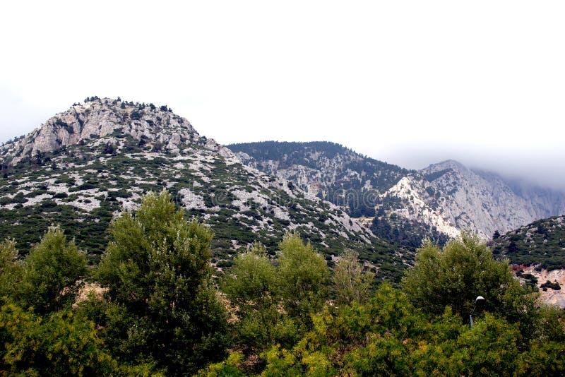 Pendii del supporto Parnassus, Grecia fotografie stock libere da diritti