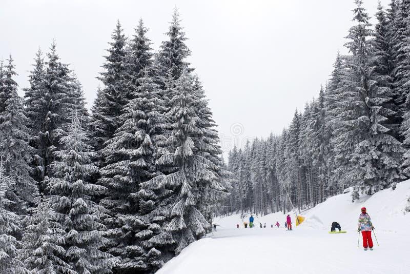 Pendio dello sci con gli sciatori immagine stock