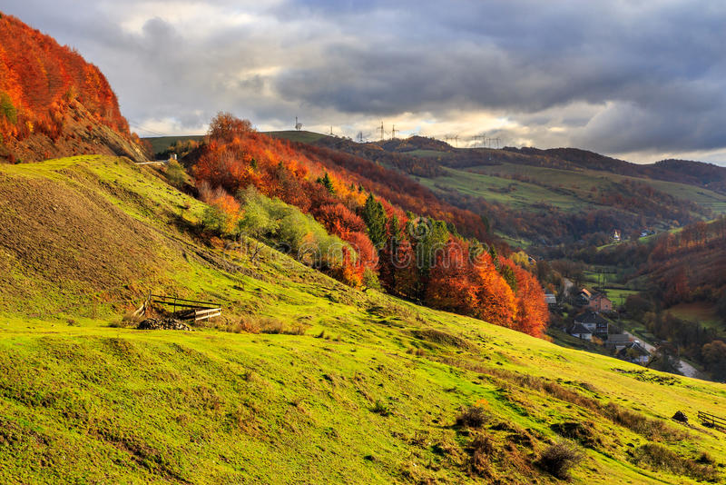 Pendio di collina di autunno con il pino e gli alberi variopinti della tremula del fogliame vicino fotografia stock