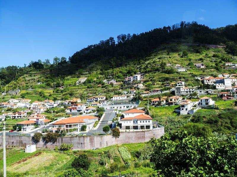 Pendio di collina ripido sopra Funchal con le case e l'agricoltura fotografia stock