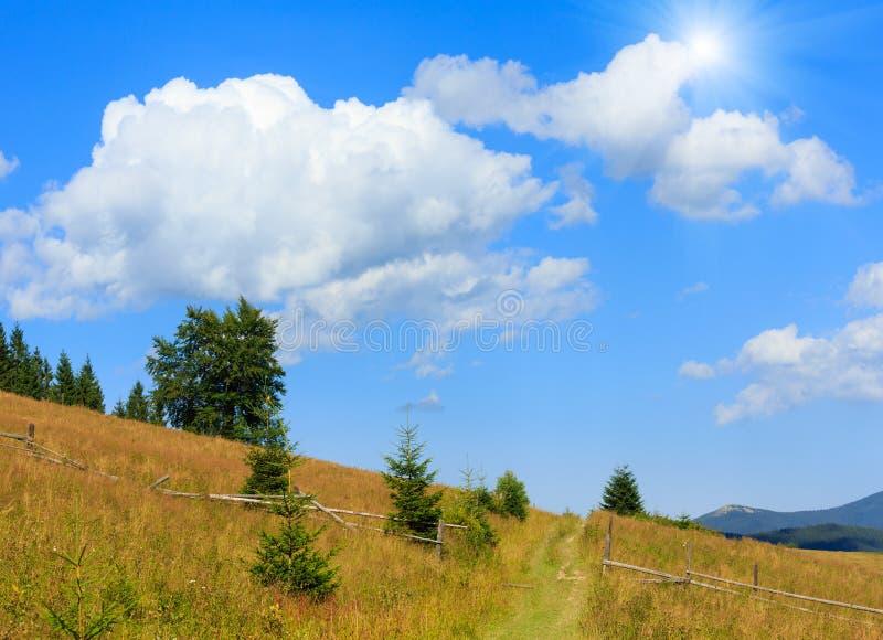 Pendio di montagna del sole di estate carpatico, Ucraina fotografia stock libera da diritti