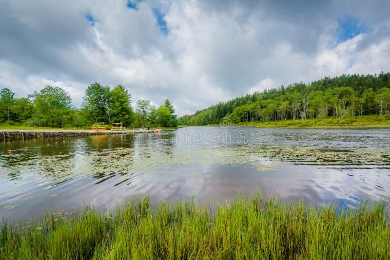 Pendleton jezioro przy Blackwater, Spada stanu park, Zachodnia Virginia zdjęcia stock