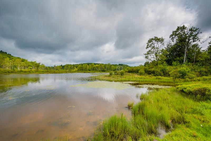 Pendleton jezioro przy Blackwater, Spada stanu park, Zachodnia Virginia obrazy stock