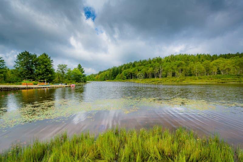 Pendleton jezioro przy Blackwater, Spada stanu park, Zachodnia Virginia fotografia royalty free