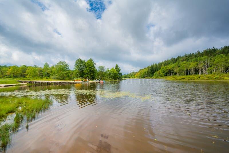 Pendleton jezioro przy Blackwater, Spada stanu park, Zachodnia Virginia fotografia stock