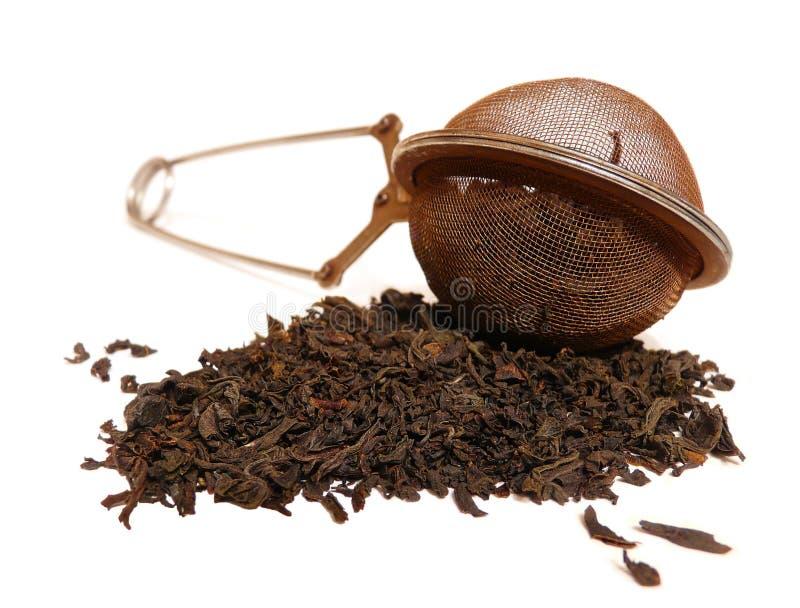 Peneira do chá fotografia de stock