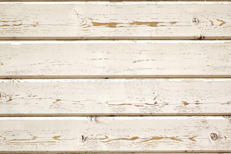 Peneling di legno ruvido obsoleto dal BAC bianco stagionato delle assicelle immagine stock libera da diritti