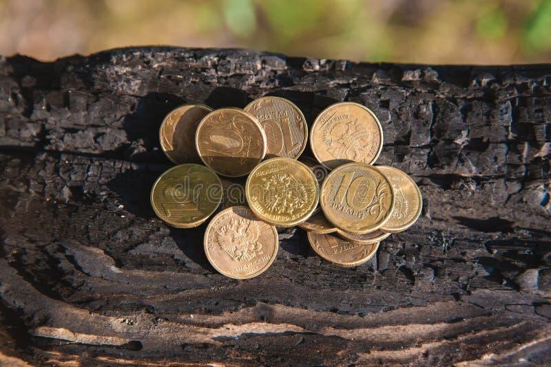 Pengar myntar rubel som ligger på ett bränt träd royaltyfria bilder