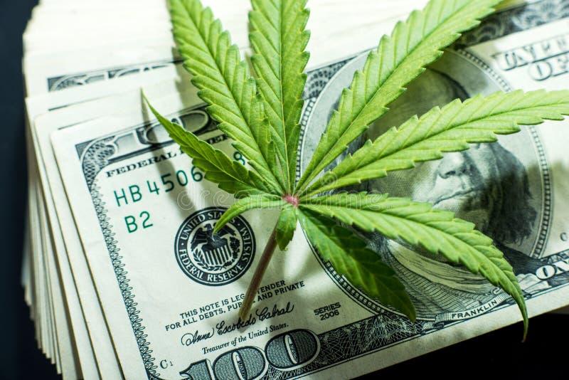 Pengar och marijuana royaltyfri foto