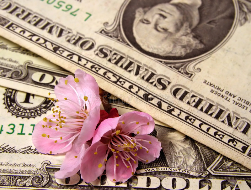 pengarförnyelse arkivbilder