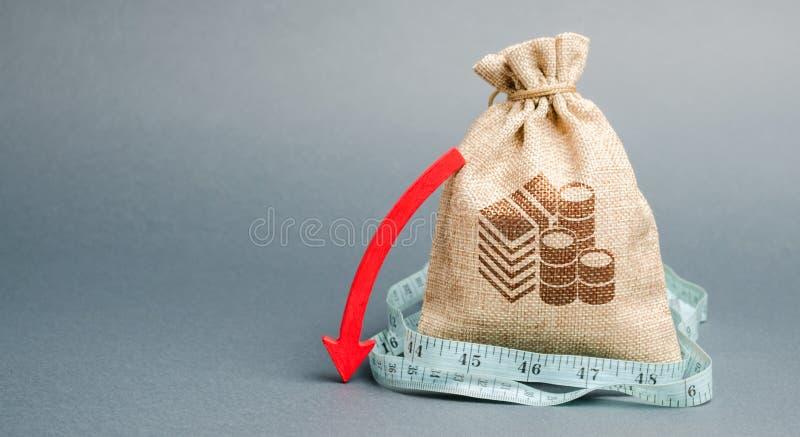 Pengarpåse med den röda pilen ner Begreppet av att f?rminska vinster Unprofitable aff?r huvudutfl?de Rapport och finansiellt royaltyfri bild