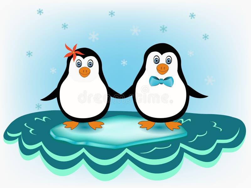 Penguin couple vector illustration