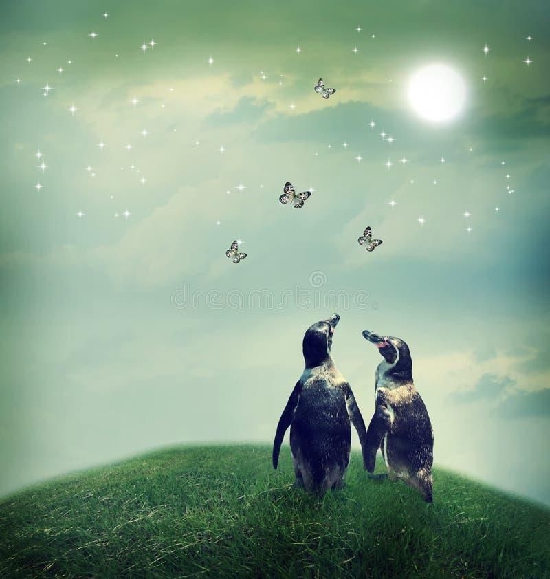 Penguin couple in fantasy landscape royalty free stock image
