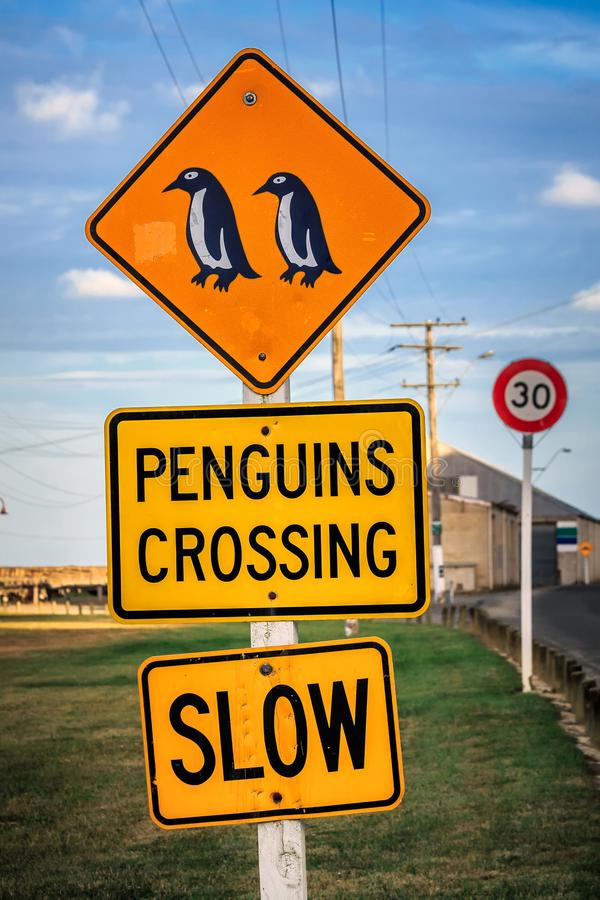 New Zealand coast. Penguin crossing sign at Oamaru in the South Island of New Zealand. Omaru is home to the blue penguin royalty free stock images