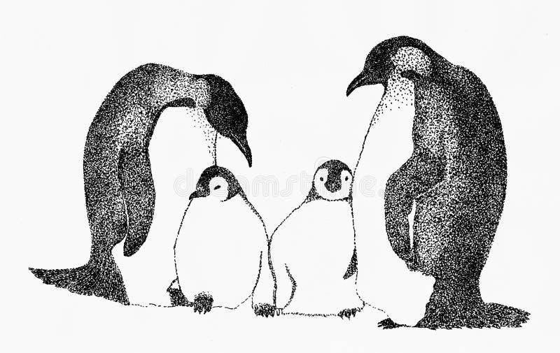 Penguin family stock illustration