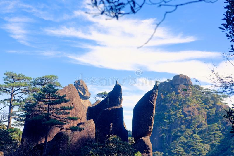 Penguin-Mount Sanqingshan. The penguin is located in Jiangxi Mount Sanqingshan stone world natural heritage, national scenic area scenic spots from the South stock images