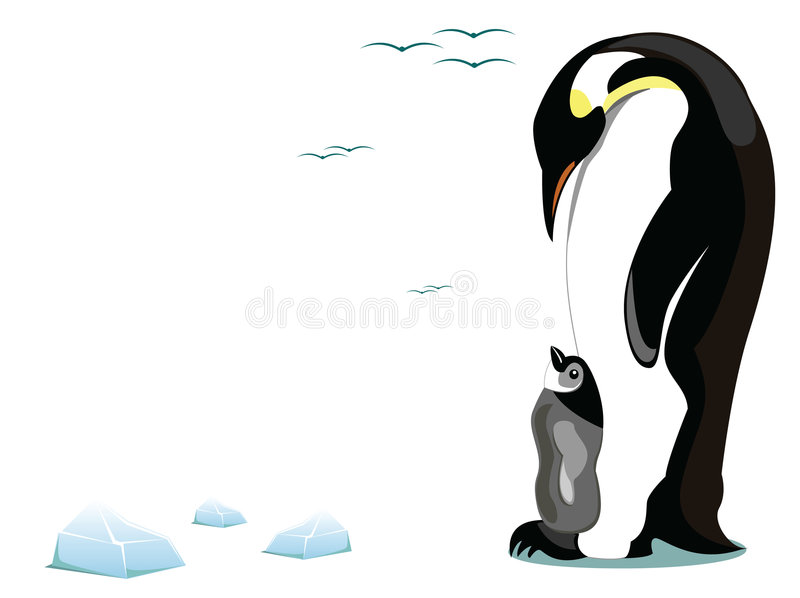 Penguin And Offspring Royalty Free Stock Images