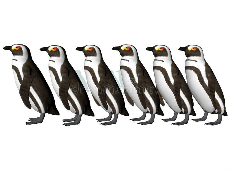 Penguin Row royalty free illustration