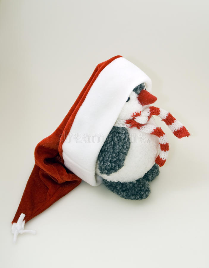 Download Penguin In Winter Cap And Scarf Stock Image - Image: 28305537