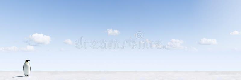 Penguin in winter landscape