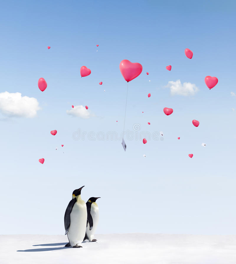 Download Penguins and Balloons stock photo. Image of heart, balloons - 19081542