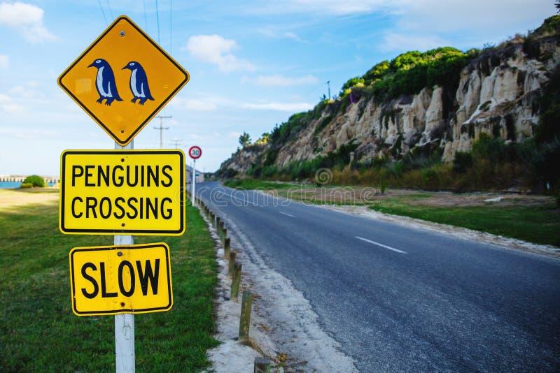 Penguins crossing sign near Blue Penguin colony in Oamaru, New Zealand stock photo