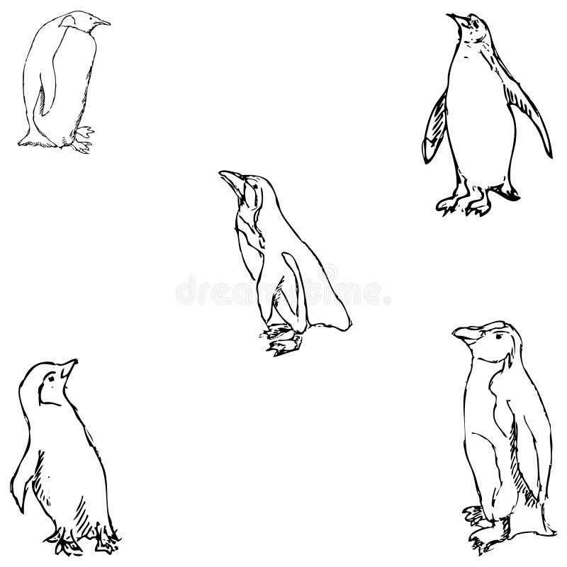 penguins een schets met de hand De tekening van het potlood stock afbeelding