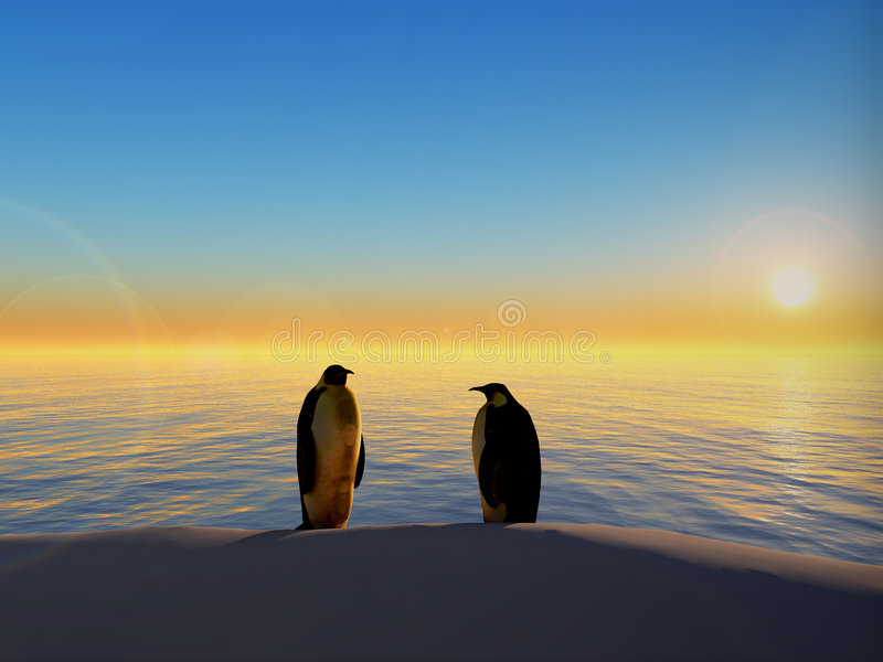 Penguins by ocean sunset. Scenic view of two penguins silhouetted by colorful sunset over ocean stock photos