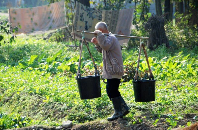 Pengzhou, China: Fazendeiro com cubetas de água fotos de stock