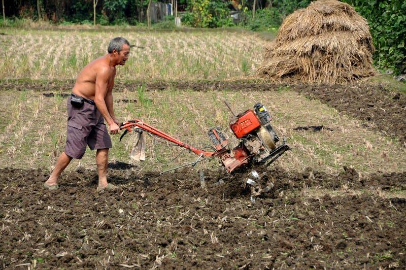 Pengzhou, China: Fazendeiro que ara o campo fotografia de stock