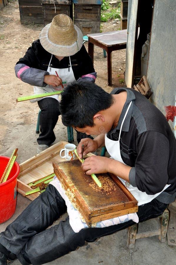 Pengzhou, China: Imker die Honing haalt stock fotografie