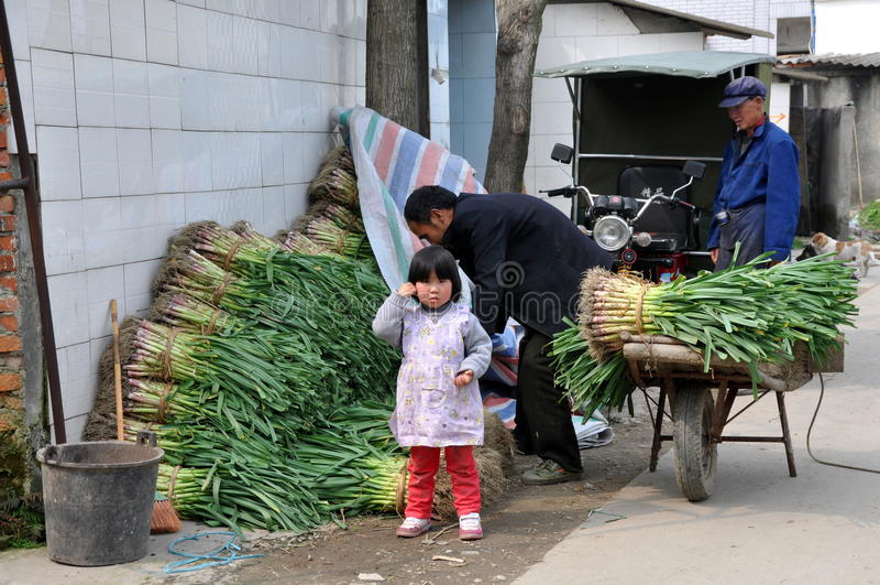 Pengzhou, China: Landbouwers met Knoflook stock foto