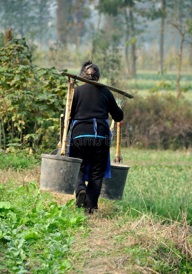 Pengzhou, China: Woman with Water Pails. An old woman walking along an earthen berm carrying two water pails suspended from a shoulder yoke on a Sichuan province stock photography