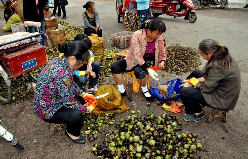 Download Pengzhou, China: Women Shelling Fresh Walnuts Editorial Image - Image: 27899005
