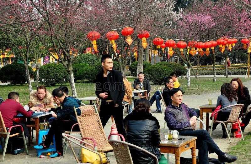 Pengzhou, Chiny: Popijanie herbata w parku zdjęcie royalty free