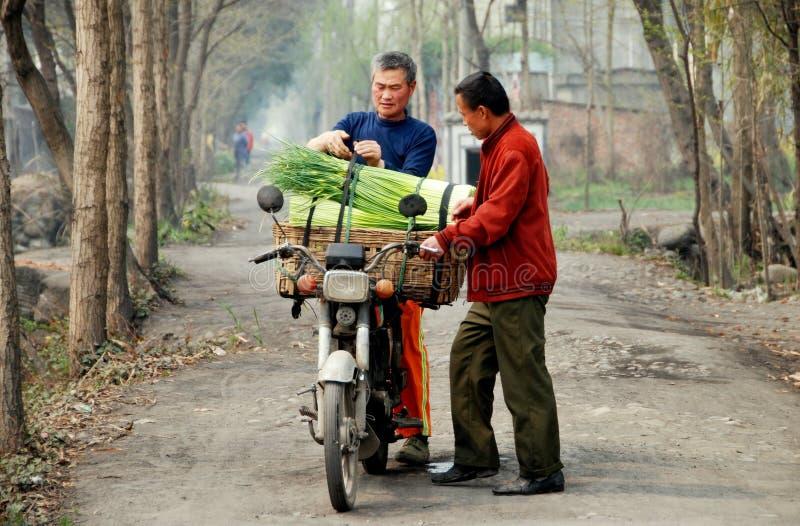 Pengzhou, Cina: Coltivatori con gli Scallions fotografia stock