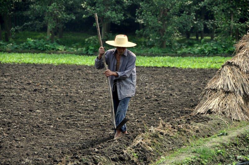 Pengzhou Kina: Bonde som fungerar hans fält royaltyfria foton