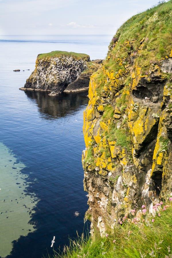 Penhascos íngremes e uma ilha pequena fora da costa norte de Antrim, Irlanda do Norte fotos de stock royalty free
