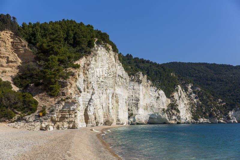 Penhascos brancos altos da praia na regi?o de Apulia, It?lia de Vignanotica fotografia de stock royalty free