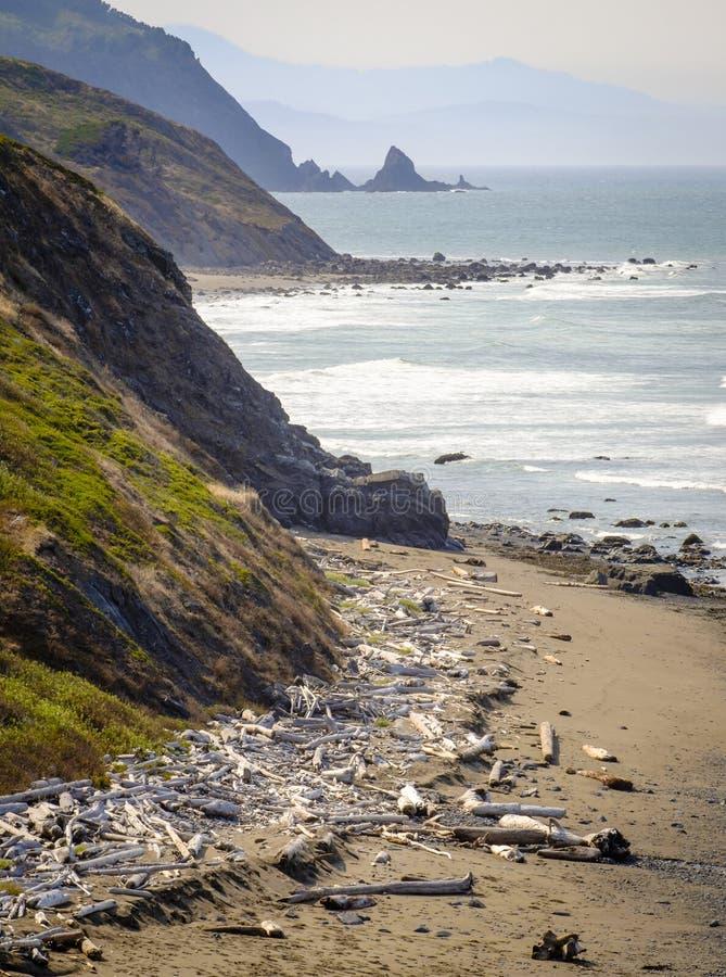 Penhascos da costa de Oregon, Oceano Pacífico imagem de stock