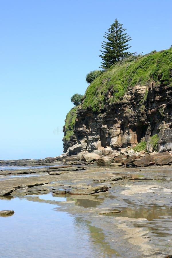 Download Penhascos da praia imagem de stock. Imagem de maré, queensland - 540983