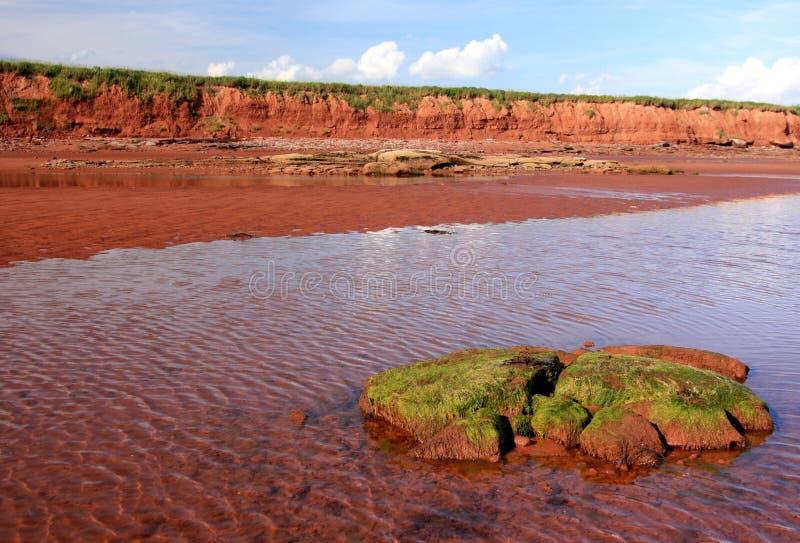 Penhascos vermelhos na costa de Argyle fotos de stock