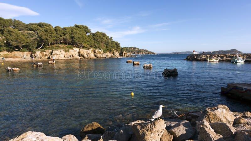 Peninsula of Giens stock photo