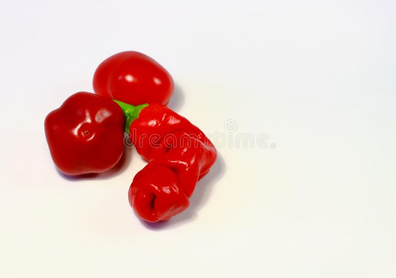 Penis and testicles of hot pepper royalty free stock photos