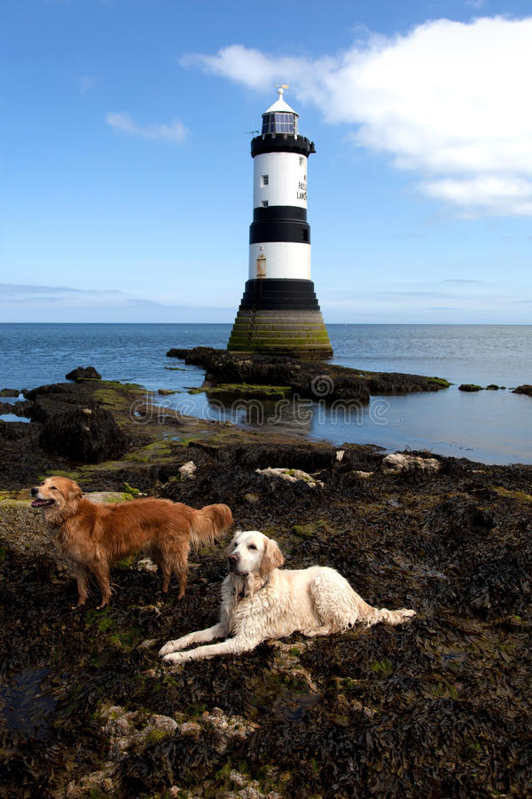 Download Penmon Point stock image. Image of lighthouse, isle, wales - 25107467