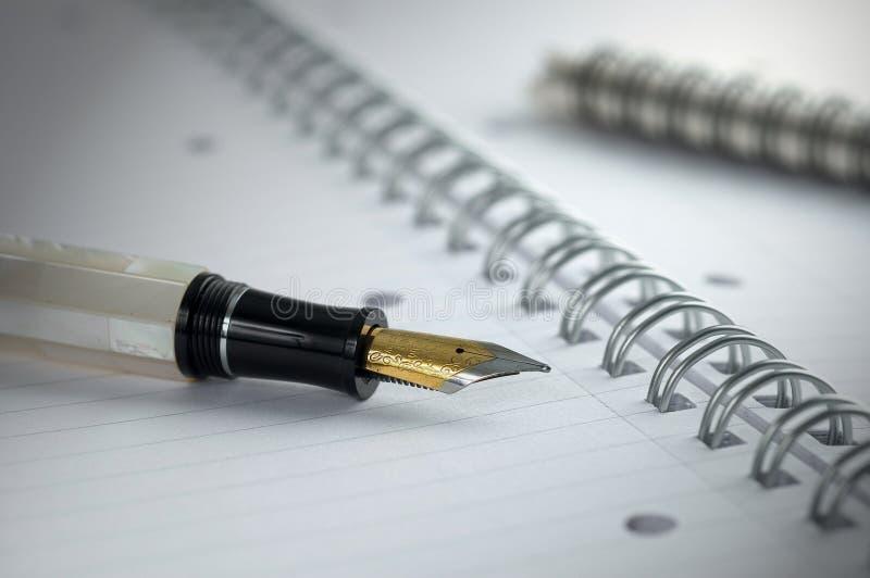 Penna e documento fotografia stock libera da diritti