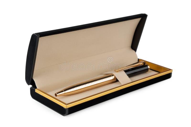 Penna i svart ask royaltyfri bild