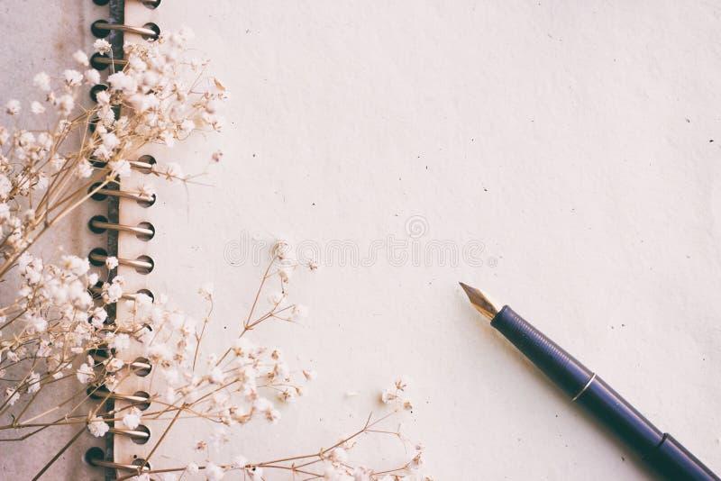 Penna stilografica su carta invecchiata, effetto d'annata fotografia stock libera da diritti
