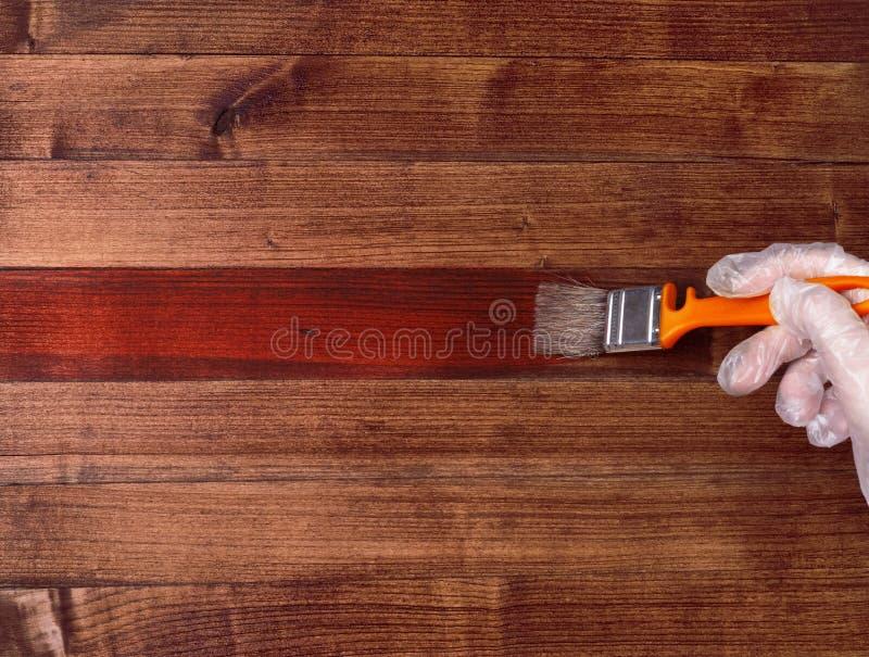 Pennello su una tavola di legno Rinnovamento della Camera Verniciatura del legno naturale con una sbavatura del pennello immagini stock
